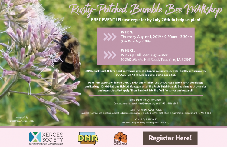 photo of rusty patched bumble bee event flyer