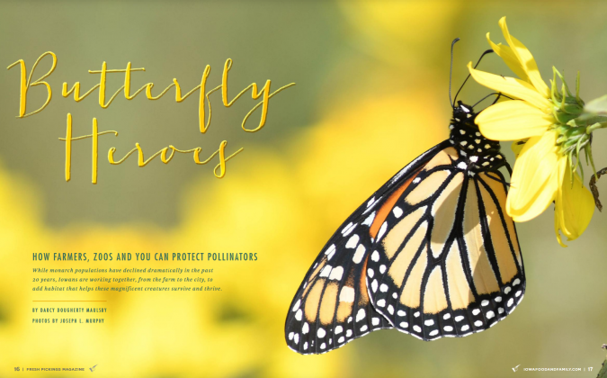"Image of ""Butterfly Heroes"" magazine spread in 2019 Fresh Pickings (credit J. Murphy)"