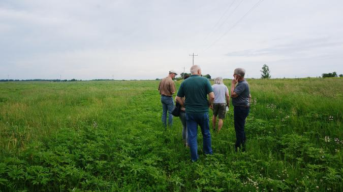 Photo of Field Day Participants in CRP Pollinator Habitat in Floyd County