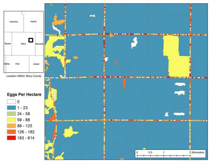 Simulation Results showing egg distribution on landscape