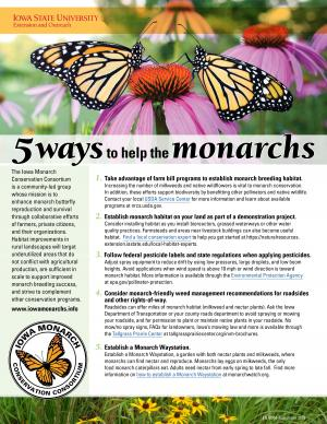 5 ways to help monarchs from the Iowa Monarch Conservation Consortium
