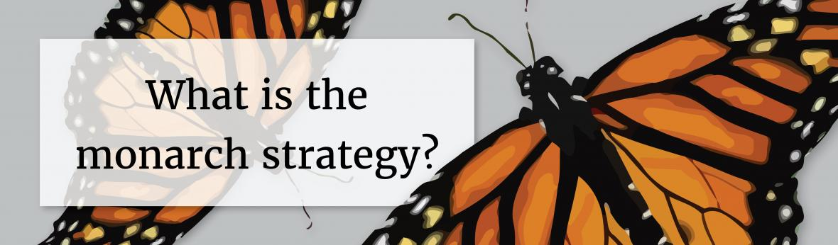 "image with ""what is the monarch strategy?"""