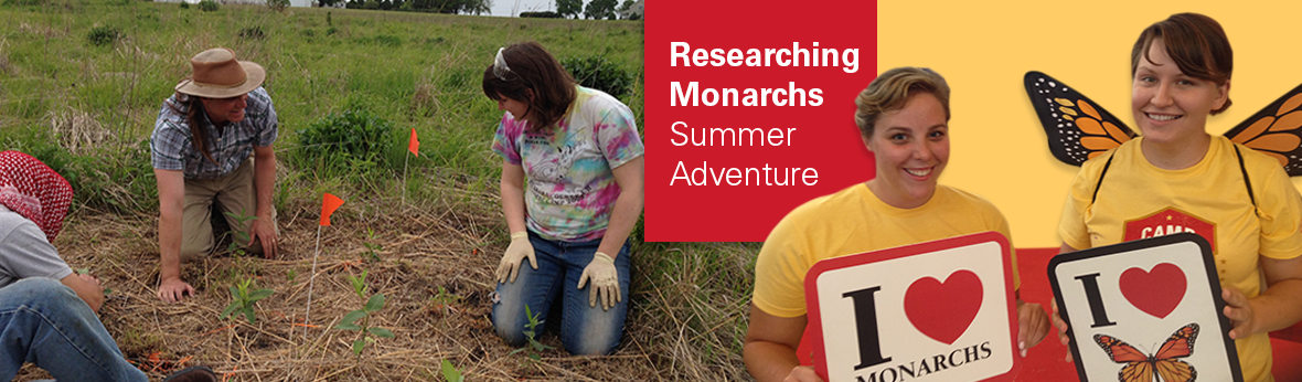 Image link to story about Monarch Summer Adventure